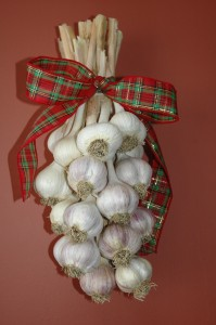 Hardneck Garlic Bouquet